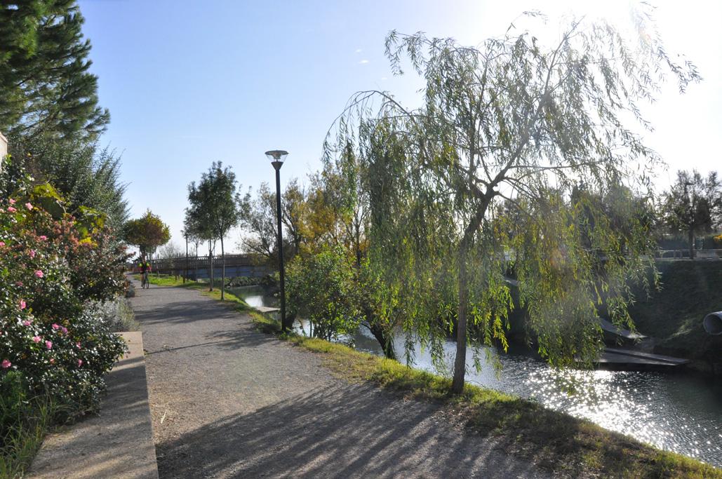 Les poumons verts ville de lunel for Horaire piscine lunel